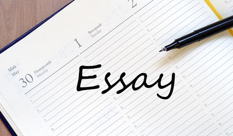 essay outline truth is a rare commodity despite the dom important essays outline for css exams