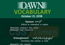 Dawn Newspaper Vocabulary 21st October 2018
