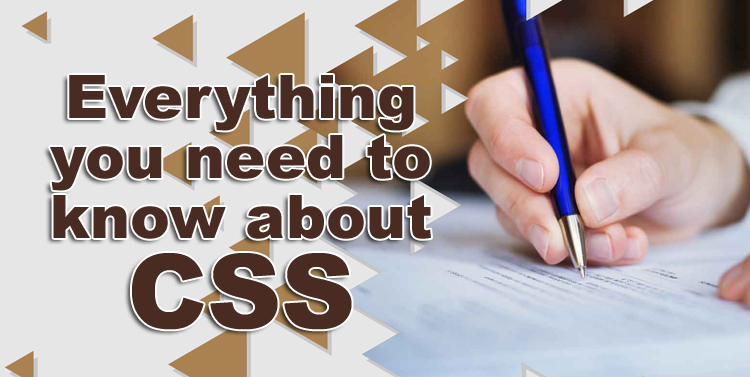 Everything you need to know about CSS