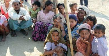 Rohingya crisis a pragmatic approach for Pakistan