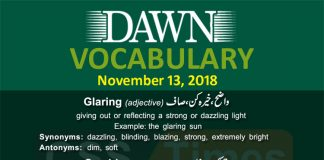 Daily Dawn Vocabulary with urdu Meanings 13 November 2018