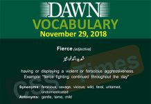 Daily dawn Vocabulary with Urdu Meanings 29 November