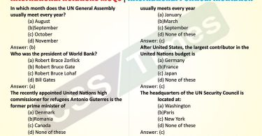 International Relations MCQs | International Political Institution