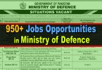 Ministry of Defence Advertisement