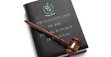 Article 6: democracy's guarantor