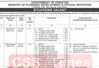 Ministry of Planning, Development & Special Initiatives Job Advertisement