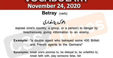 Daily DAWN News Vocabulary with Urdu Meaning (24 November 2020)